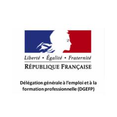 http://www.emploi.gouv.fr/acteurs/dgefp